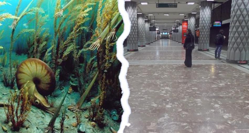 """PORTAL: În staţia de metrou Politehnică: """"Urmează Cretacicul Superior, cu peronul pe partea stângă!"""""""
