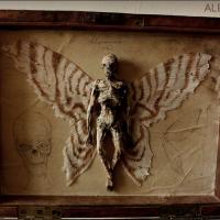 COŞMARUL LUI DARWIN: Muzeul ascuns al creaturilor mitologice. Basmele sunt adevărate!