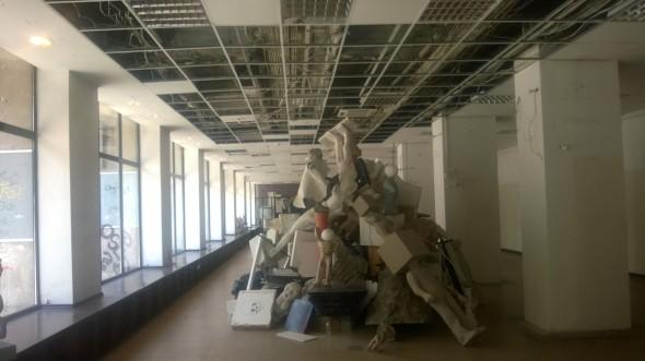 Sala Dalles - MNAC - Musuroil cu arta