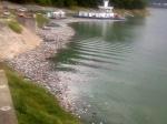 Lacul Bicaz gunoaie 3