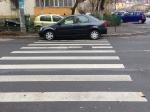 parcare-pe-zebra-2
