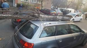 copac-prabust-peste-masina-sector-3-2