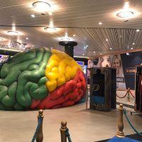 MACRO & MICRO: Sistemul Solar și Corpul uman, în expoziții temporare la mall. Pentru minți sclipitoare!
