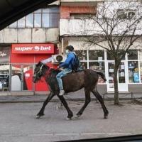 IAȘI: Caii ne dau aripile ce ne lipsesc. Galop de 40 de km să-și vadă femeia iubită și copilul nou-născut