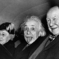 ART SAFARI 2021: Einstein scoate limba din tabloul lui Obie Platon. La propriu!